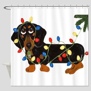 Dachshund (blk/tan) Tangled In Shower Curtain