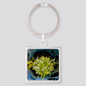 False-colour SEM of macrophage in  Square Keychain
