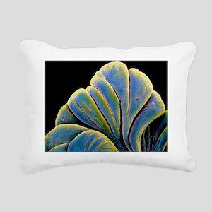p6800229 Rectangular Canvas Pillow