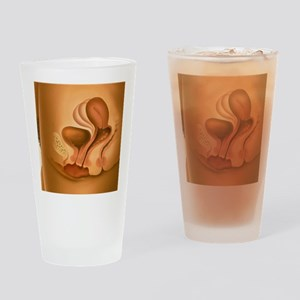 Female sexual arousal Drinking Glass