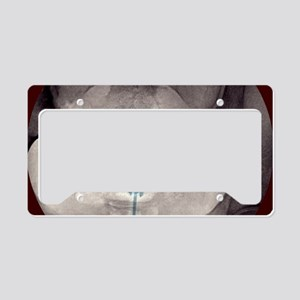 p6160371 License Plate Holder