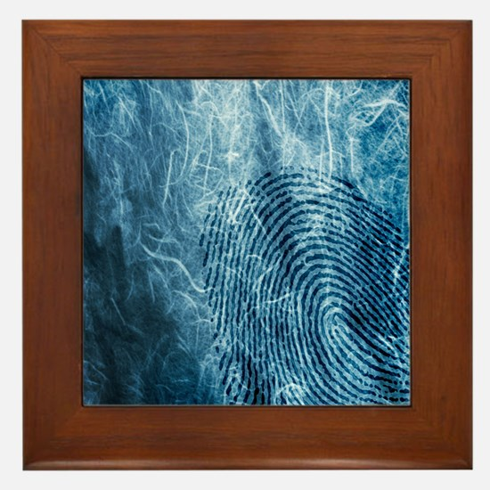 p7100452 Framed Tile