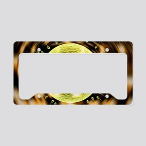 Fertility research License Plate Holder