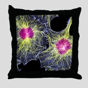 Fibroblast cells showing cytoskeleton Throw Pillow
