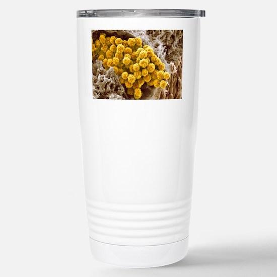p2340061 Stainless Steel Travel Mug