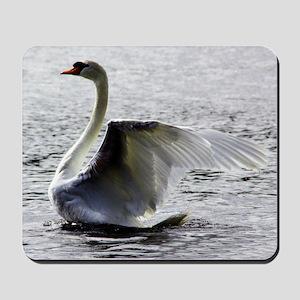 Swan Calendar January Mousepad