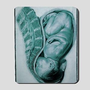 Full-term foetus at 40 weeks Mousepad