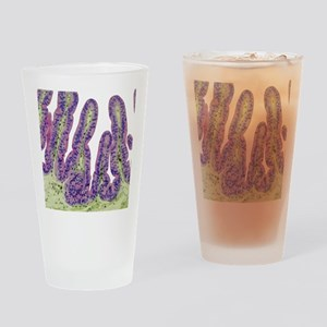 Gall bladder surface, light microgr Drinking Glass