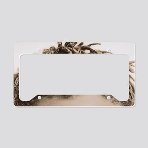 Hair License Plate Holder