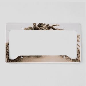 Hair License Plate Holder