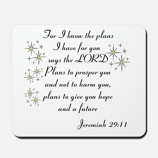 Jeremiah 29 Mousepad