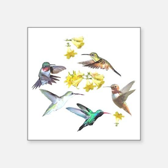 "HUMMINGBIRDS AND TRUMPET PL Square Sticker 3"" x 3"""