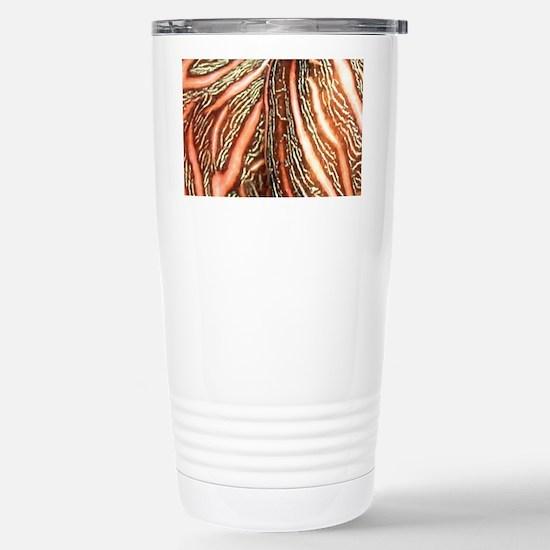 nudibrownlaptop_skin Stainless Steel Travel Mug