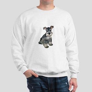 Schnauzer Pup3 Sweatshirt
