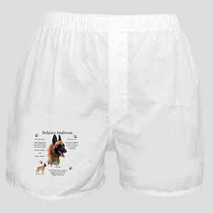 Malinois 1 Boxer Shorts