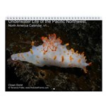 North Pacific Ocean Life Wall 2013 Calendar v1