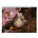 North Pacific Ocean Life Wall 2013 Calendar v2