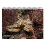 North Pacific Ocean Life Wall 2013 Calendar v3