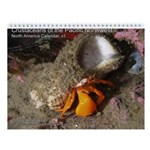 Crustaceans of the Pacific North 2013 Calendar v1