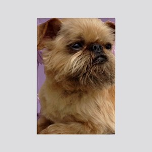 Brussels Griffon Rectangle Magnet