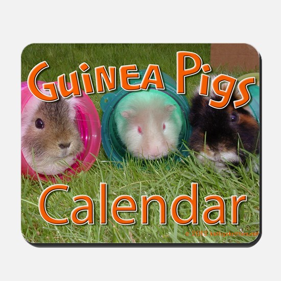 Guinea Pigs #2 Wall Calendar Mousepad
