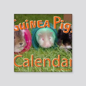 "Guinea Pigs #2 Wall Calenda Square Sticker 3"" x 3"""