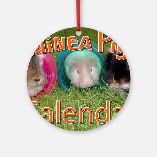 Guinea Pigs #2 Wall Calendar Round Ornament