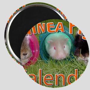 Guinea Pigs #2 Wall Calendar Magnet