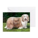 Bearded Collie Greeting Cards (Pk of 10)