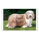 Bearded Collie Rectangle Sticker