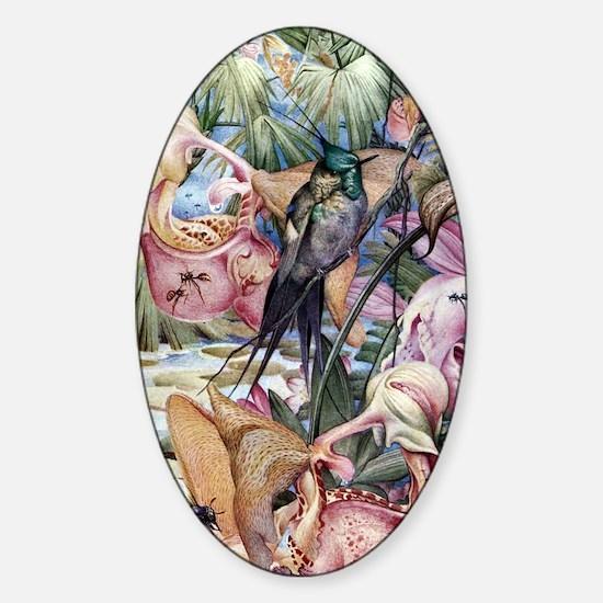 Edward Julius Detmold Tropical Bird Sticker (Oval)