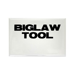 BIGLAW TOOL Rectangle Magnet (10 pack)