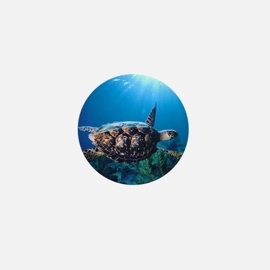 A turtle in the sun Mini Button