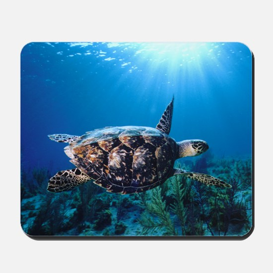 A turtle in the sun Mousepad