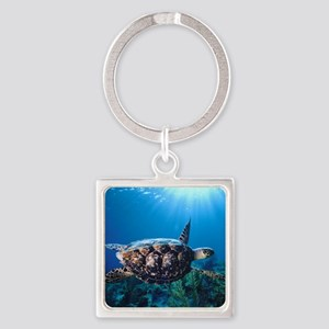 A turtle in the sun Square Keychain