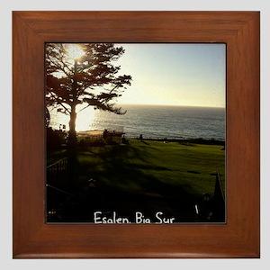 Front lawn at Esalen, Big Sur Framed Tile