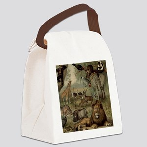 am_shower_curtain_kl Canvas Lunch Bag