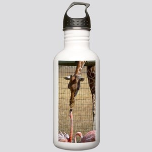 Giraffe and Flamingo Stainless Water Bottle 1.0L