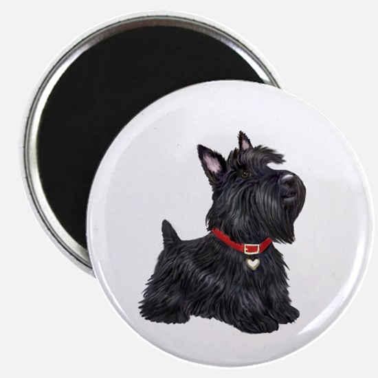 Scottish Terrier #2 Magnet