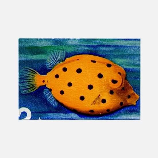 1967 Ryukyu Islands Boxfish Posta Rectangle Magnet