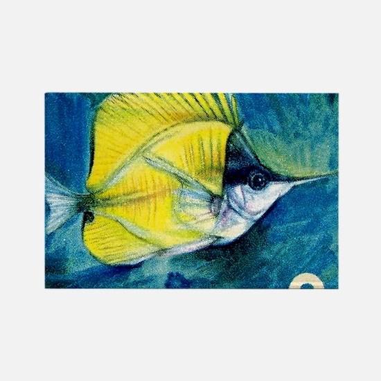 1967 Ryukyu Islands Forcepsfish S Rectangle Magnet