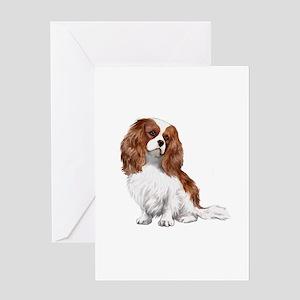 Cavalier (blenheim2) Greeting Card