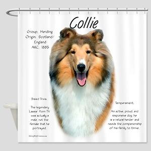 Collie (rough sable) Shower Curtain