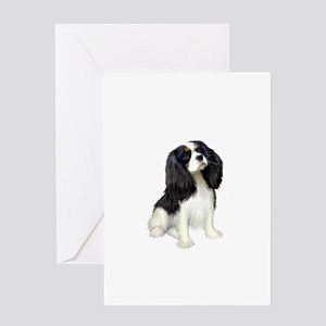 Cavalier (tri color) Greeting Card