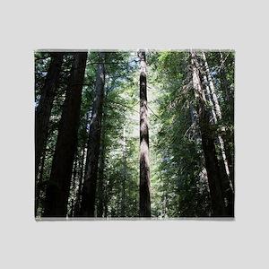 Sacred Redwood Throw Blanket