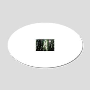 Sacred Redwood 20x12 Oval Wall Decal