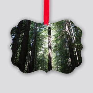 Sacred Redwood Picture Ornament