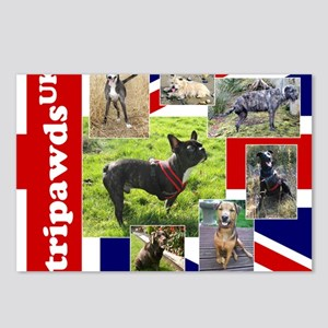 Tripawds UK Three Legged  Postcards (Package of 8)