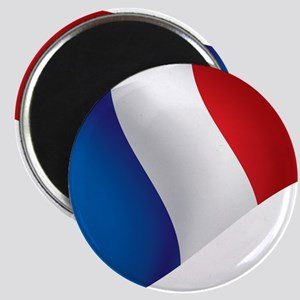 French Flag Magnets
