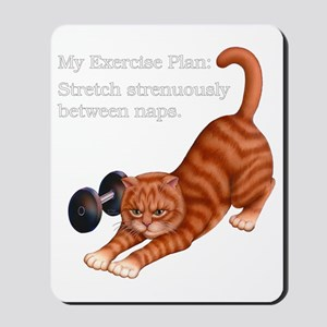 Exercise Plan B Mousepad
